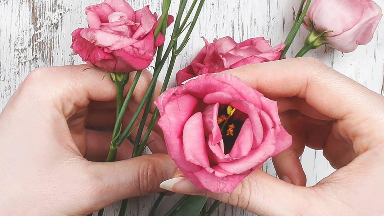 Nepakartojamas gėlių grožis