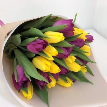 Geltonų ir violetinių tulpių puokštė su eilėmis, 25 vnt.